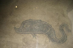 Mosaico romano (Delfino) nel Coro